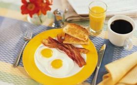 Обои яйцо, яичница, Завтрак
