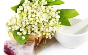 Обои цветы, корзина, мыло, ландыши, flowers, spa, lilies