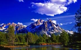 Картинка лес, горы, река, Природа