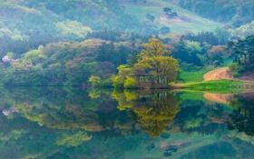 Обои дорога, деревья, горы, озеро, склон, беседка