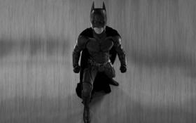 Обои batman, черно-белый, бэтмен, The Dark Knight, смотрит, Темный рыцарь, комикс