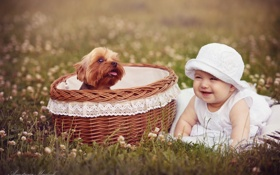 Картинка корзина, ребенок, собака, девочка, корзинка