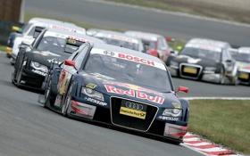 Обои Audi, racing, red bull