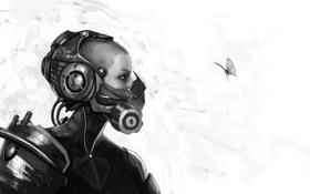 Картинка butterfly, monochrome, cyborg, High Tech