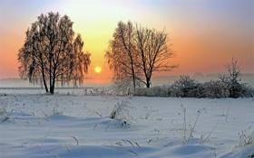 Обои зима, солнце, природа, восход