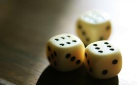 Обои кубики, игра, кости, белые, на столе, совпадение