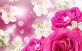 Обои цветы, пузыри, bubbles, цветочки, flowers, roses, розы розы