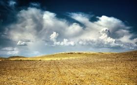 Картинка Небо, Облака, Поле, Пейзаж, Жолтое