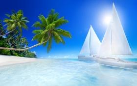 Обои море, пляж, тропики, пальмы, отдых, beach, sea