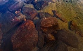 Обои вода, прозрачность, озеро, камни, дно