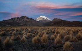 Картинка небо, снег, горы, вечер, кусты, Боливия