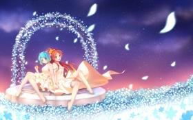 Обои небо, взгляд, цветы, девушки, ноги, яблоко, лепестки