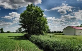 Обои widescreen wallpapers, трава, 3200x1200, поле, дерево, деревья, дома