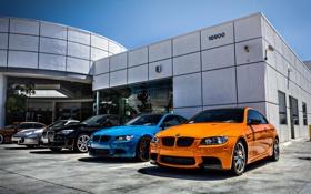 Обои бмв, Porsche, BMW, ярко, Orange and Blue