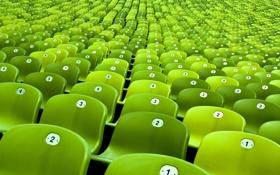 Обои яркий, зеленый, фото, фон, цвет, разное, ряды