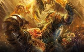 Картинка эльф, битва, гном