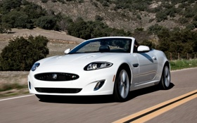 Картинка дорога, белый, деревья, Jaguar, XKR, Ягуар, кабриолет
