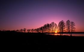 Картинка небо, солнце, деревья, закат, озеро, река, силуэт