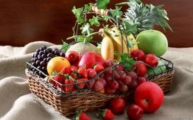 Картинка wallpaper, fruit, plant