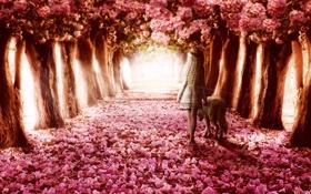 Обои девушка, деревья, цветы, волк, прогулка, аллея, венок