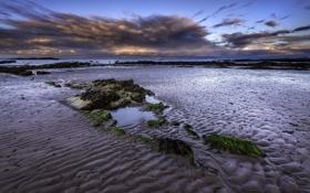 Картинка песок, камни, пляж, берег, рассвет, океан, водоросли