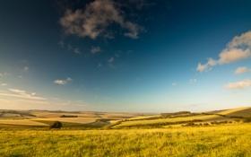 Обои облака, небо, поля, лето