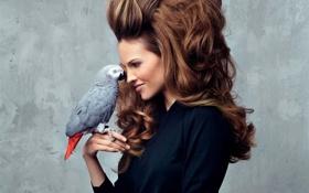 Картинка прическа, Хилари Суонк, попугай, шикарная