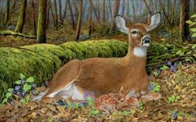 Обои осень, картина, картины, живопись, олени