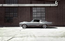 Картинка мустанг, форд, тюнинг, стена, gt 500, ford mustang