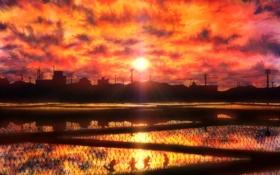 Картинка солнце, закат, дети, столбы, провода, поля, аниме