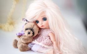 Обои волосы, игрушки, кукла, медвежонок