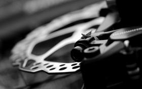Картинка велосипед, Диск, кузнечик, чёрно - белое.