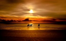 Обои море, закат, природа, кони, всадники