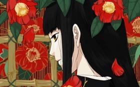 Обои листья, цветы, крупный план, Девушка