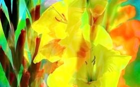 Обои гладиолус, лепестки, цветы
