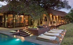 Обои бассейн, домик, дерево