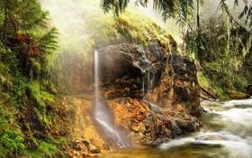 Обои лес, река, камни, водопад, деревья.