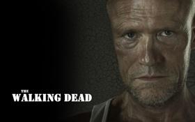 Картинка взгляд, лицо, фон, надпись, зомби, zombie, сериал