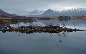 Обои горы, озеро, отражение, вершины, островок, снежные, гладь воды