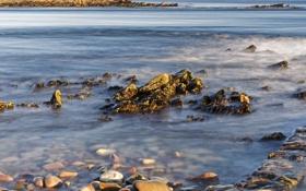 Обои море, природа, камни, фото, побережье, Alderney Channel Islands