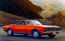 Обои машина, Chevrolet, Camaro, шевроле, классика, 1968, камаро