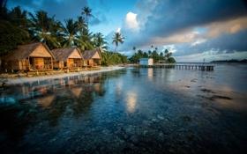Обои вода, город, тропики, фото, побережье, бунгало, Французская Полинезия