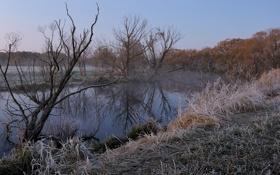 Картинка зима, иней, пейзаж, река, утро