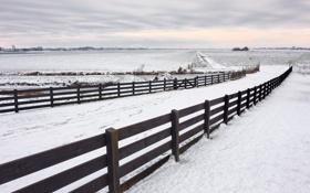 Обои зима, забор, дорога
