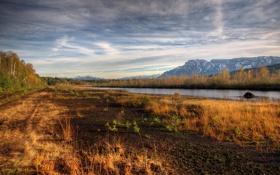 Картинка осень, лес, трава, деревья, река, земля, холмы