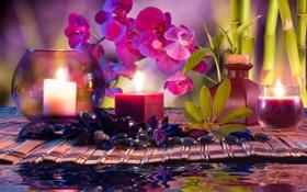 Обои вода, цветы, свечи, бамбук, орхидеи, water, flowers