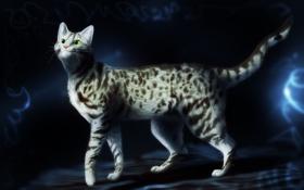Картинка кот, пятна, тёмный фон, зелёные глаза