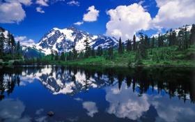Картинка лес, горы, природа, озеро, отражение, reflection, Mount Shuksan