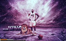 Обои Lebron James, basketball, лев, Либрон Джеймс, баскетбол, король, паркет