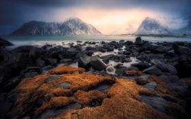 Картинка камни, горы, туман